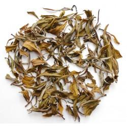 Darjeeling Gopaldhara Silver Tips