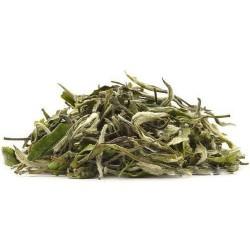 Silver Needle - White Tea - Nilgiris