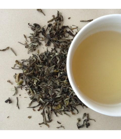 Darjeeling Spring Flush Tea