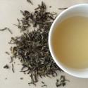 Darjeeling Gopaldhara Spring Flush Tea
