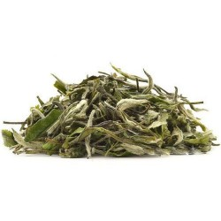 Silver Needle - White Tea - Nilgiris